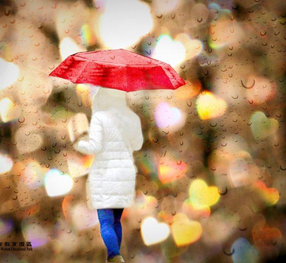 將我們圈在一起的那把傘