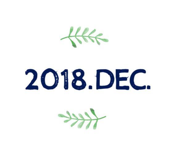 201812月福智校訊總結